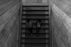16_fot._Kasia-Harasiuk